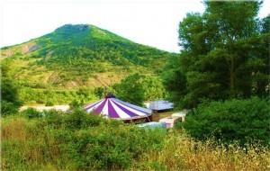 1421946375_festival-d